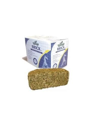 Aliment fibreux BRICK Dynavena