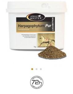 HARPAGOPHYTUM PUR Horse Master - Articulations