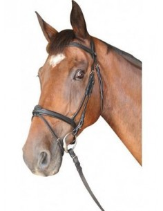 Bridon CABOURG Privilège Equitation