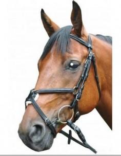Bridon Royan CROISE Privilège Equitation