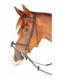 Bridon DINARD Privilège Equitation