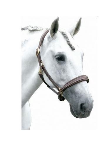 Licol la Baule Privilège Equitation
