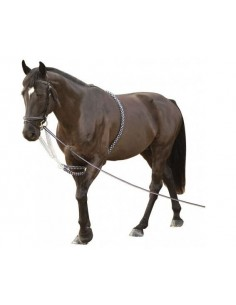 Enrênement SOFT ROPE Canter Flags & Cup