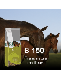 Floconné Elevage B150 Breeding Royal Horse