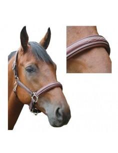 Licol ROYAN Privilège Equitation