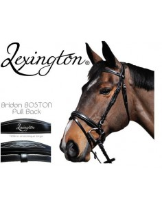 Bridon Boston Lexington Privilège Equitation.