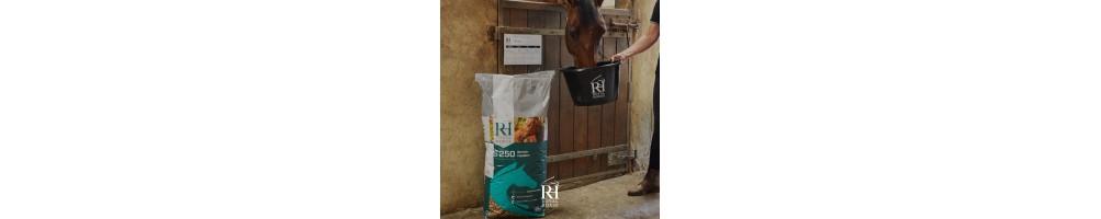 SSE Royal Horse