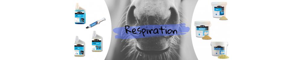 SSE Respiration